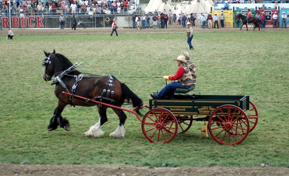 Babbitt wagon at the Pendleton round-up