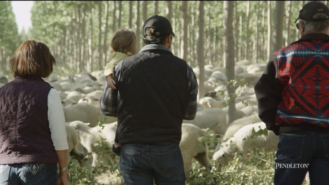 Cameron Krebs, a Pendleton wool grower, holds his duahgter in his arms and stands with his mother and father, looking at a flock of sheep grazing in a cottonwood grove.