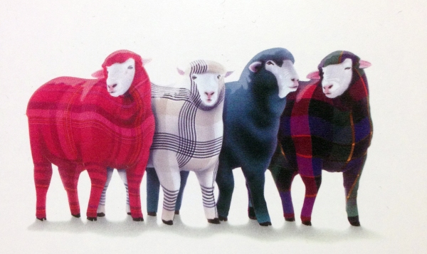 PlaidSheep