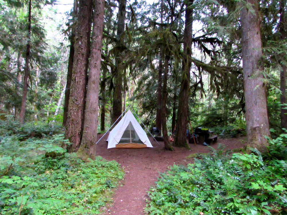 A tent in the woods (photo Greg Hatten)