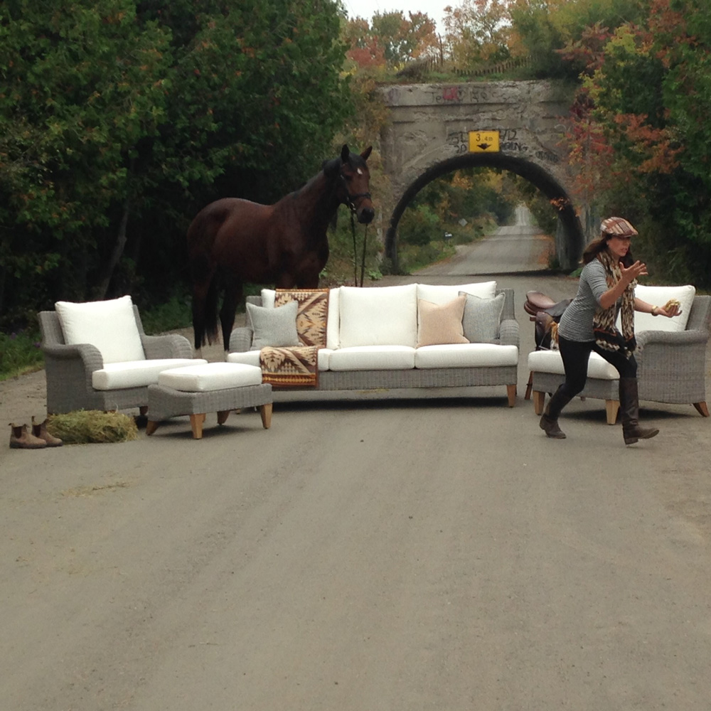 Outtake with dog, horse, and runaway set dresser