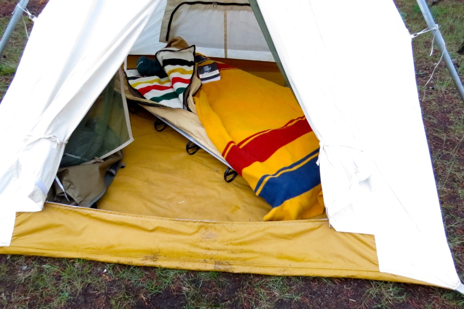 Tent and cot with Yellowstone blanket