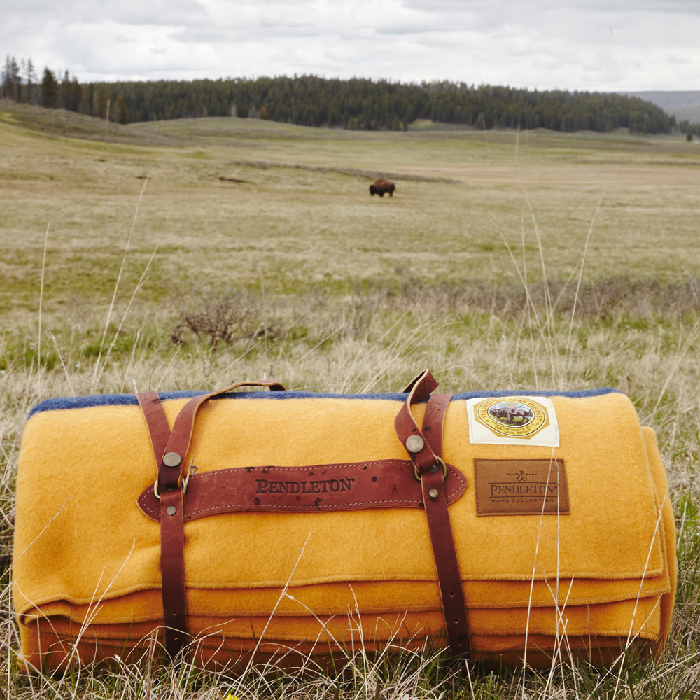 OurFreeWays_ The Yellowstone blanket, rolled in a leather carrier, with a bison in the distance