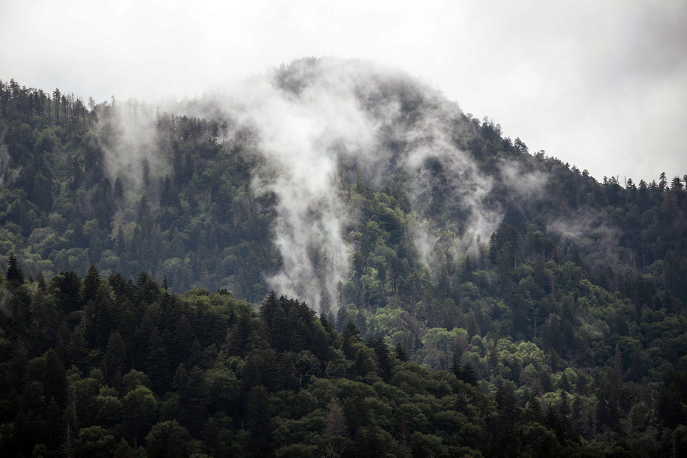 Matthews_ Mountains covered with mist that looks like smoke
