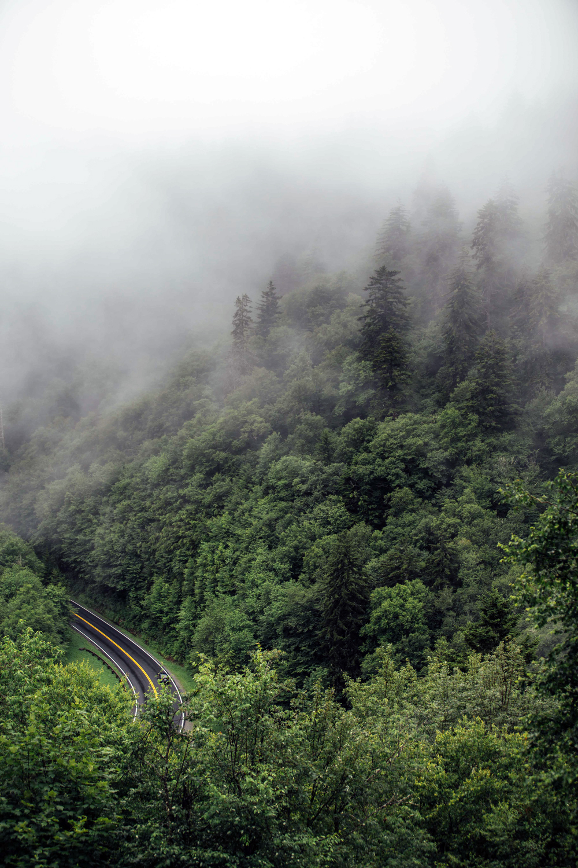 Matthews_ Misty mountainsides
