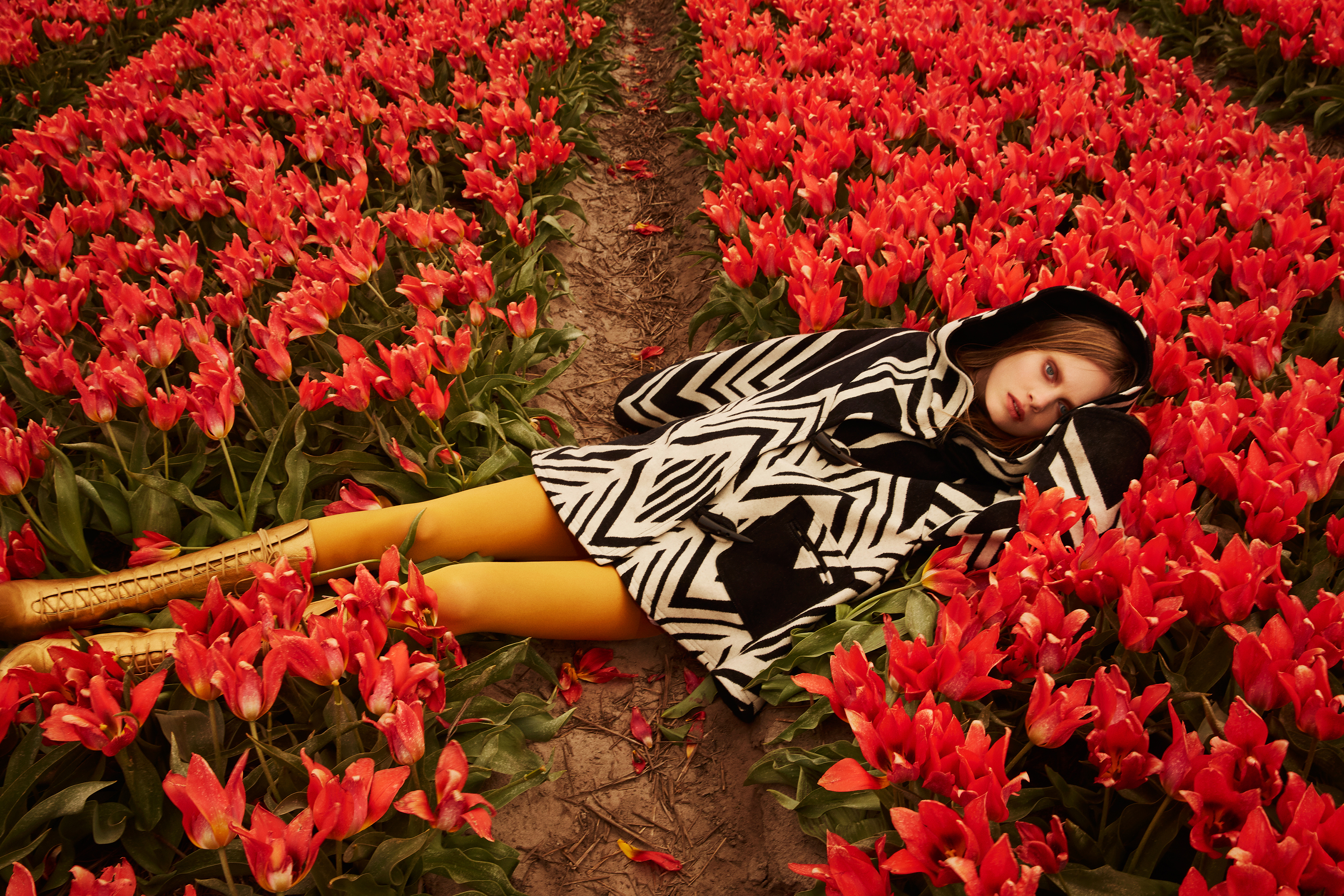 A model wearing a black and white white cape reclines in a field of red tulips.