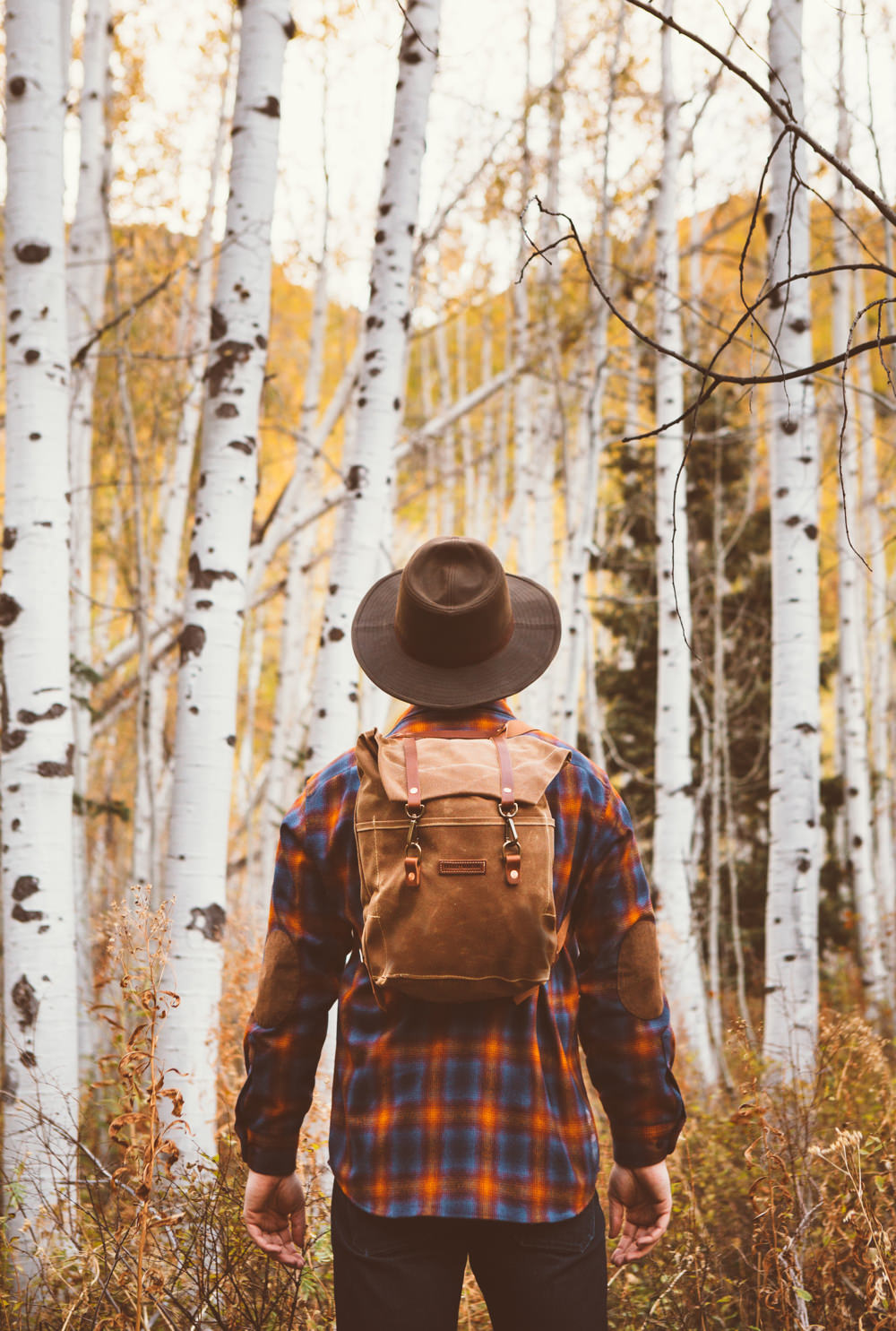 Brandon-Burk-Photography: A man in a plaid shirt and hat with his back to the camera in front of an aspen grove.