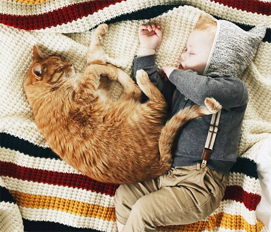A baby and an orange cat sleeping on a Pendleton striped throw