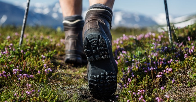 Hiking boots worn by a person hiking in a meadow with purple wildflowers.