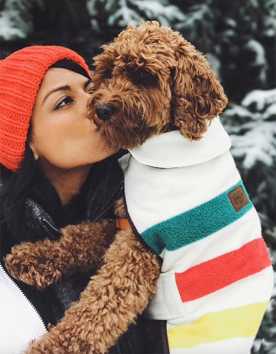 A young woman kisses her goldendoodle puppy