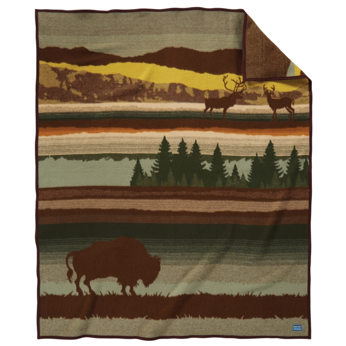 ZE494-53056-Buffalo-Wilderness-Front