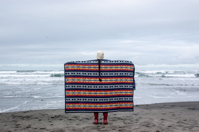 ft_stevenson_coast-4