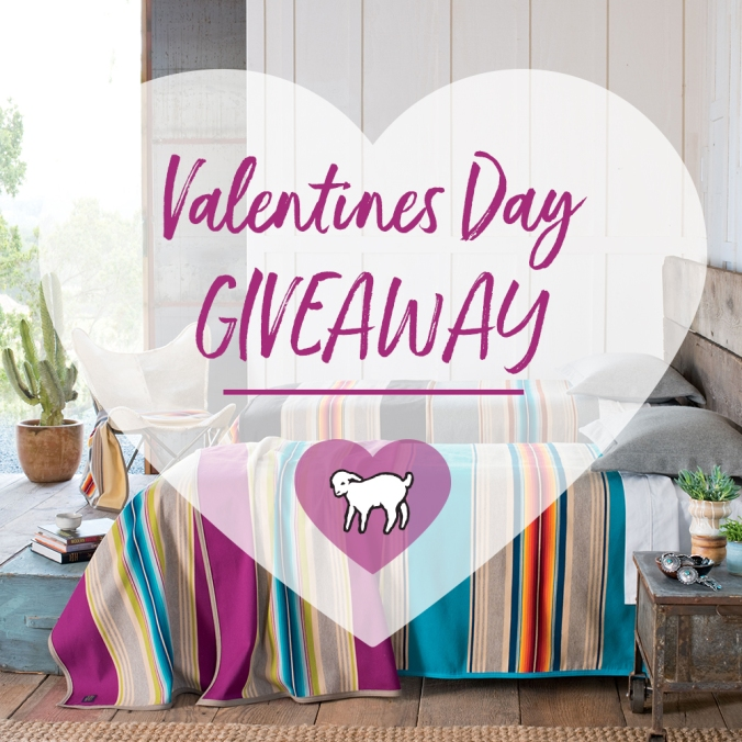 "Two twin-sized beds made up with serape blankets. A superimposed heart contains the words ""Valentines Day Giveaway."""