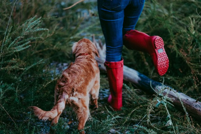 A woman in jeans and red Pendleton rain boots steps over some wet, mossy bracken, with her red dog.