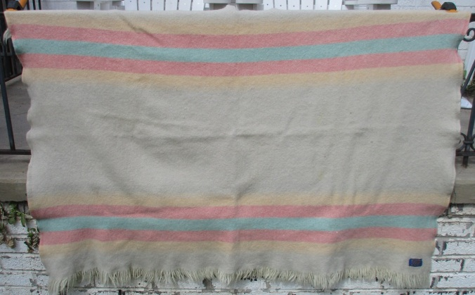 A Pendleton Zion National Park Zion blanket throw with a fringed edge from the 1960s.